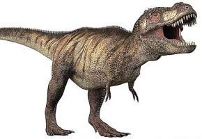 Les répliques des dinosaures seront visibles au Malley. DR