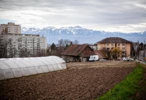La disparition de la dernière exploitation agricole urbaine de Lausanne pourrait être remise en question. MISSON