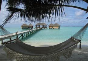 Les Maldives ont tout pour concrétiser le fantasme du Robinson choyé. Le club Subsix de Niyama est la première disco sous-marine. L'équipement du Niyama se veut résolument contemporain.