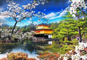 Le Pavillon d'Or de Kyoto et un mariage traditionnel nippon à Tokyo. Histoire & Voyages