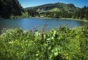 Lac de Chavaonnes