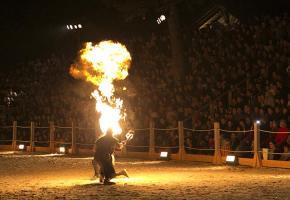 Le festival Equi-no'X sera l'occasion d'admirer des professionnels des arts du feu en pleine action.