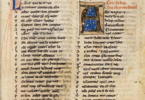 Cathédrale de Lausanne - Les 7 langues du dragon