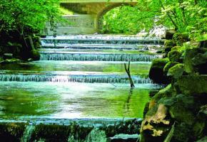 Long de 14 kilomètres, le Boiron de Morges s'écoule du pied du Jura dans le lac Léman en traversant une zone agricoletrès diversifiée.  SYLVIANNE PITTET