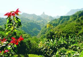 L'exceptionnel environnement de La Réunion est un paradis pour les randonneurs.