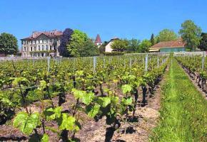 Le Château de St-Saphorin-Surmorges revit
