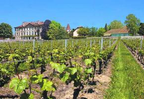 St-Saphorin - Le Château: précisions
