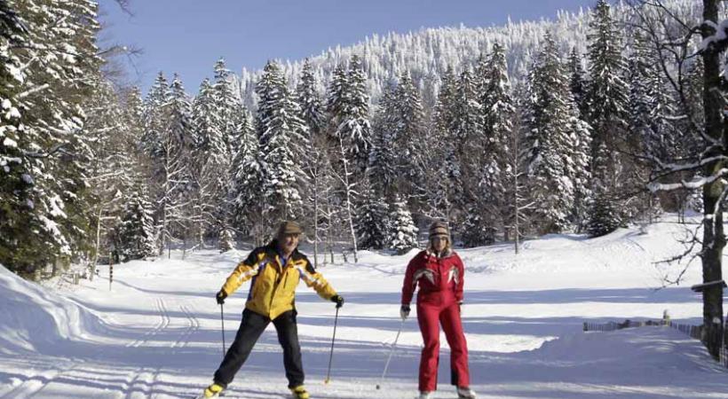 Le royaume du ski de fond.