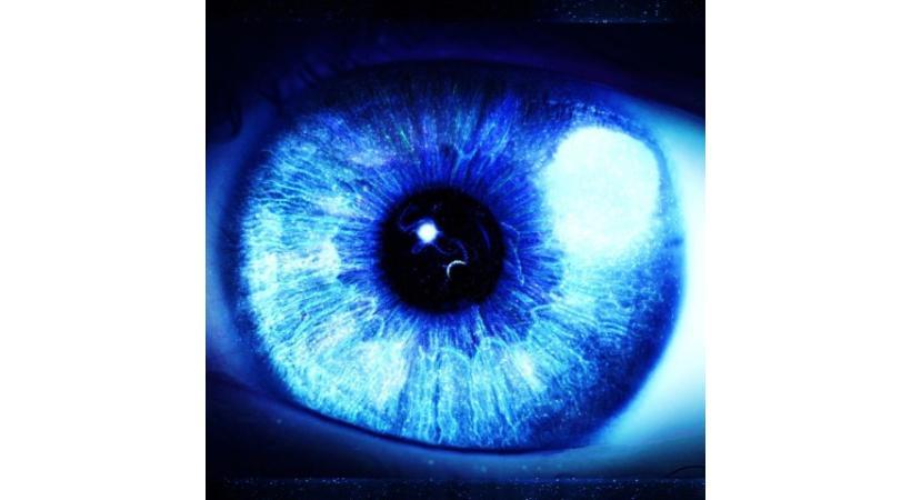 Exposition interactive et très intéressante sur l'oeil et la vision