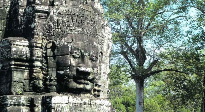 Divinité rupestre à l'ombre d'arbres centenaires.