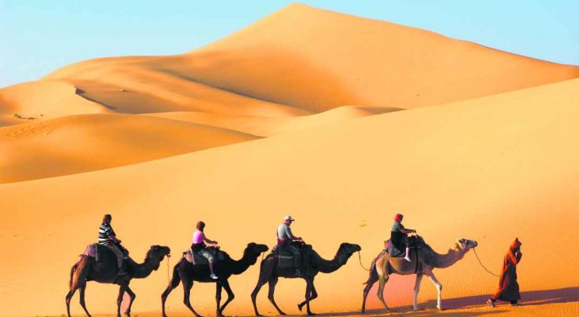 Les grandes dunes de sable, comme celles de Chegaga et Merzouga, offrent des couleurs d'exception.