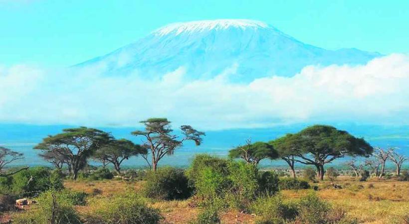 Le Kilimandjaro est le plus haut sommet d'Afrique.