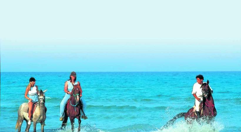 Tunisie - Balade équestre au bord de la plage.