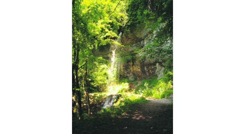 La cascade de Pisse Vache dans les Monts Berthiand.
