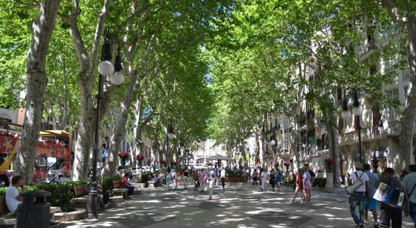 Passeig del Born, promenade ombragée de Palma.