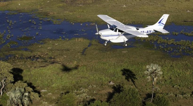 Survol du delta de l'Okavango, classé au Patrimoine de l'Unesco cette année.