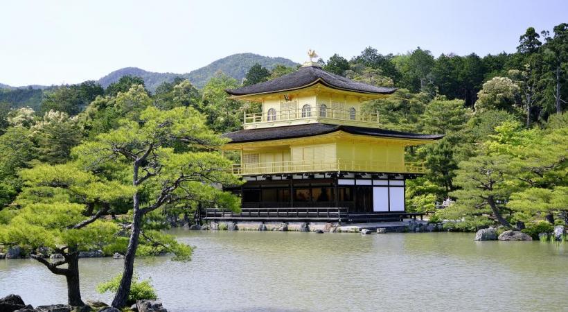 Le Pavillon d'Or, site incontournable de Kyoto. Osaka la nuit. Les plantations de thé près de Wazuka.