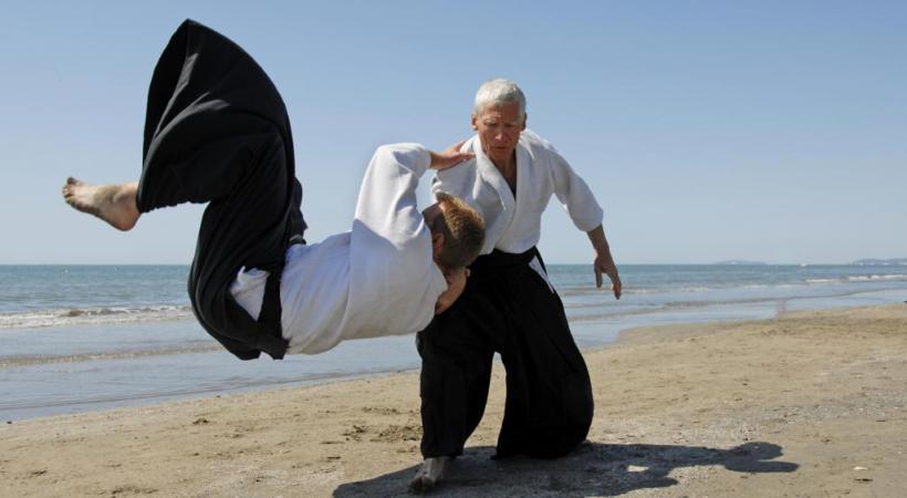 Un art martial fondé sur 6 mouvements. STOCK