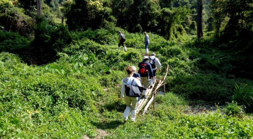Trekking dans une nature exubérante et préservée.