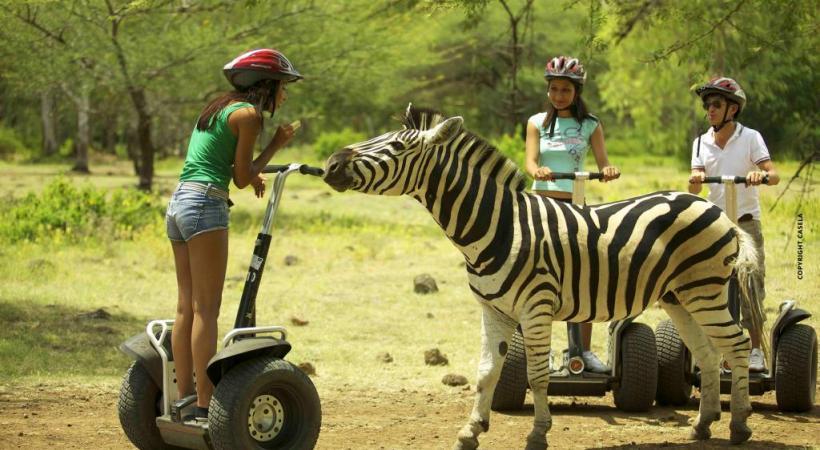 Le parc de Casela, 14 hectares destinés aux loisirs et à la rencontre avec les animaux.