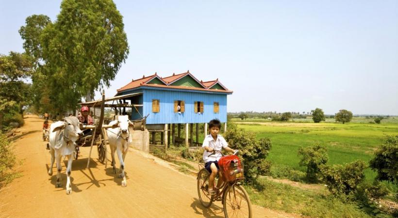 Paysages de rizières, à Kampong Tralach, au Cambodge. CROISIEUROPE