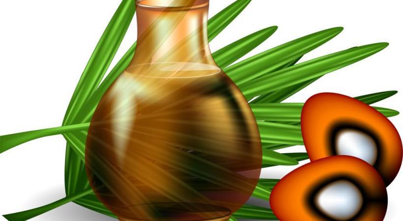 l huile de palme mauvaise pour la sant mauvaise pour l environnement lausanne cit s. Black Bedroom Furniture Sets. Home Design Ideas