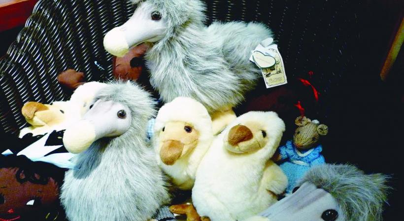 Le dodo. dr