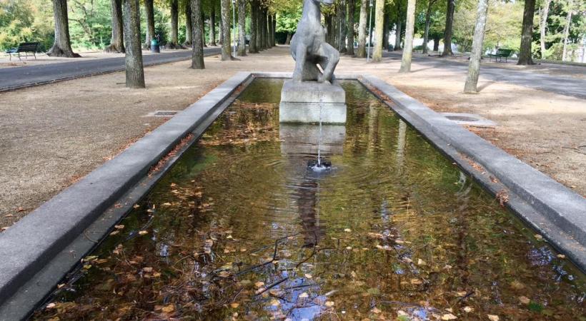 La fontaine Le Poulain jonchée de bois mort. PHK
