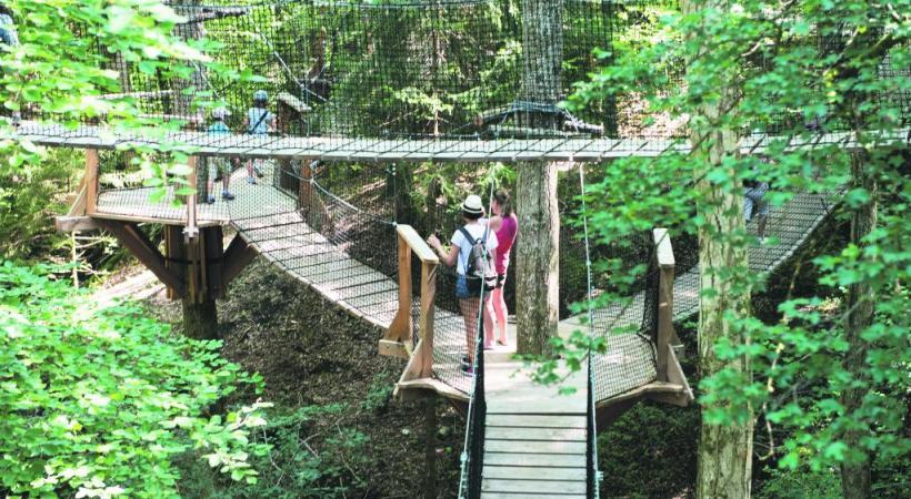 Un labyrinthe constitué de passerelles suspendues entre les arbres. Une manière originale de perdre son chemin.