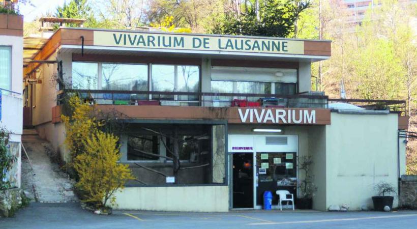 Le Vivarium a besoin de 250'000 francs d'ici la fin du mois faute de quoi il pourrait fermer définitivement ses portes.
