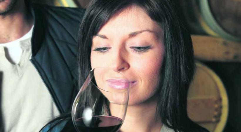 Vins - Dégustation