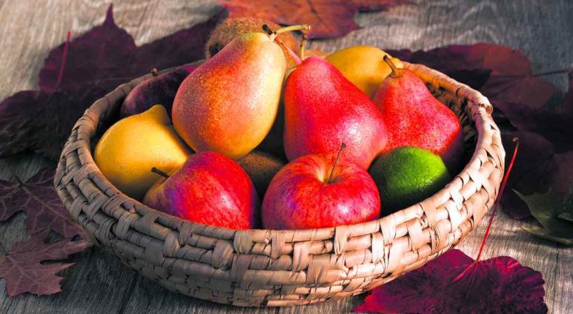 Quelques précautions sont nécessaires pour bien conserver les fruits d'automne.